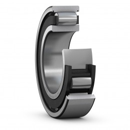 SKF-CARB-polymeric-cage